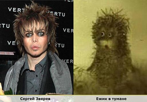 Сергей Зерев vs Ежик