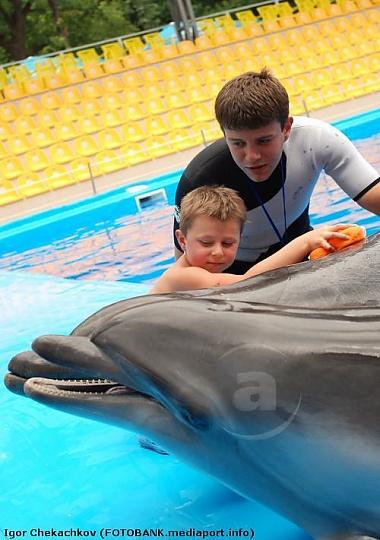 Центр дельфинотерапии