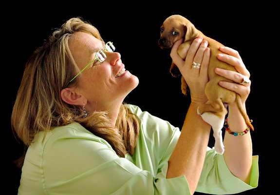 5-лапый щенок чихуахуа Прэшес
