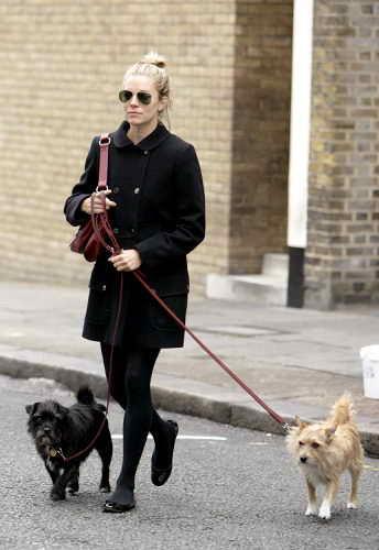 Сиенна Миллер выгуливает своих собак