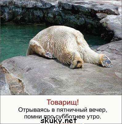 Сильно не усердствуй в пятницу((