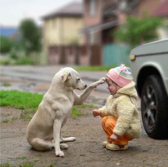 Друзья на всегда