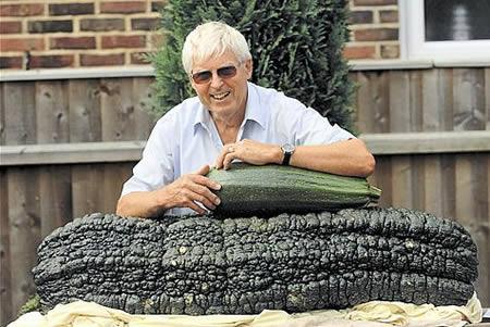 Фото огромных овощей в жопе девочек фото 66-786