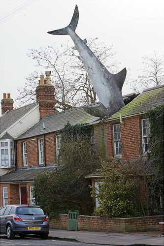 Сумасшедший дом с акулой, Англия