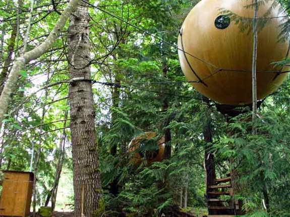 Сумасшедший сферический дом на дереве