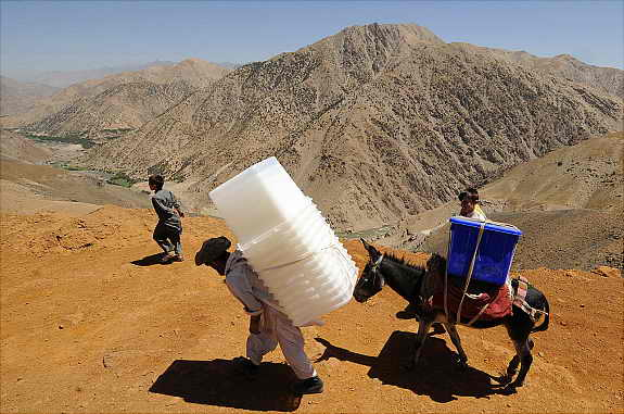 Мулы и ослы перевозят на себе избирательные урны, бюллетени, столы и стулья по долине Панджир в Афганистане