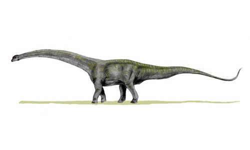 Самый большой динозавр