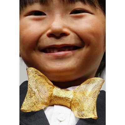 Японский актер Seishiro Kato представил самую дорогую бабочку в мире, сделанную из золотых нитей