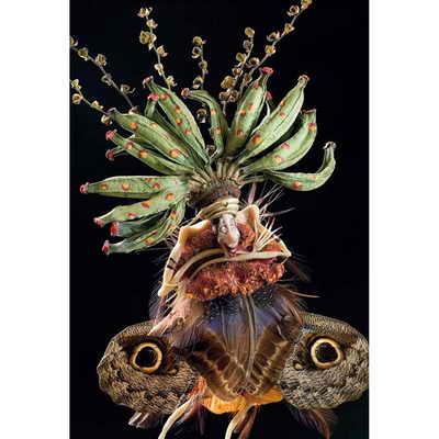 Все необходимые детали скульптор находит у флористов, энтомологов, на блошиных рынках, барахолках, на лугах, в лесах и даже в остатках от обедов из морепродуктов