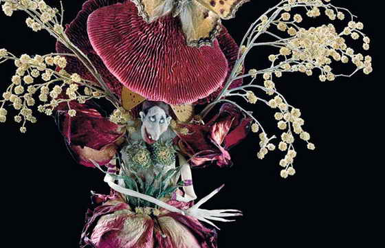Своих красивых и необычных эльфов Петра Верль делает в основном их хлеба, перьев и засушенных цветов