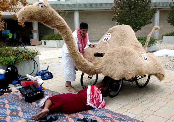 Израильские участники готовят свое транспортное средство в виде верблюда для участия в гонках Red Bull в Иерусалиме