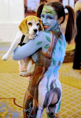 """В США прошел конкурс """"Meet the Breeds"""" (Ознакомьтесь с породой), где сравнивались собаки и кошки. На фото Debbie Holly со своей гончей Olive четко выражает предпочтение собакам с помощью бодиарта"""