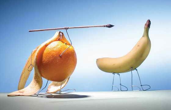 Первобытные лимоны были очень умными и хитрыми охотниками