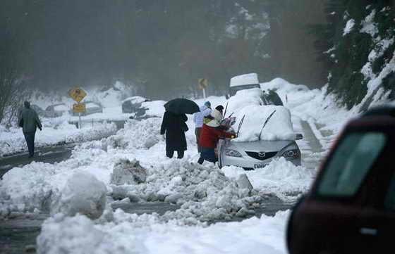 В Новой Зеландии выпало небывалое количество снега, пришлось даже эвакуирвоать людей