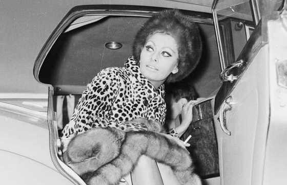 Софи Лорен в 1966 году