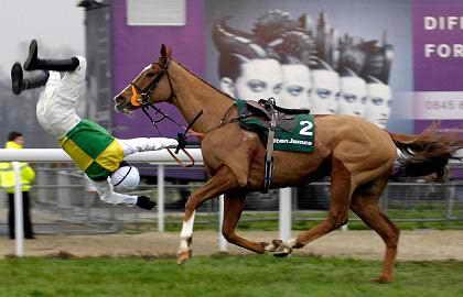 Вот так лошадь может поступить с наездником