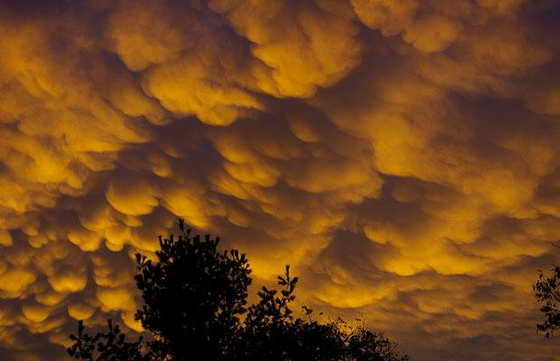 Выпуклые и многослойные облака ассоциируются с сильными бурями, торнадо, чаще всего видны на небе в теплые, летние месяцы