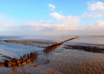 Ваттовое море (Ваддензе), Германия и Нидерланды