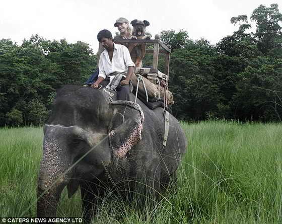 Путешествие по Непалу: Оскар и его хозяйка Джоан Лефсон едут на слоне