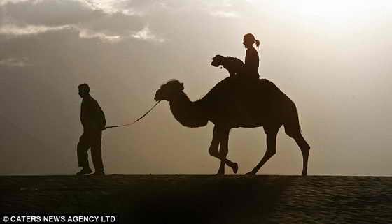 Необычный пес побывал и в Гималаях, катался на верблюде с хозяйкой