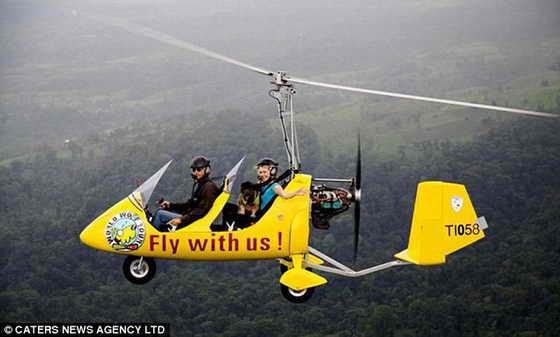 Оскар с хозяйкой пролетают над Коста-Рикой на ярком вертолете