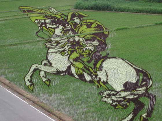 Рисовый Наполеон