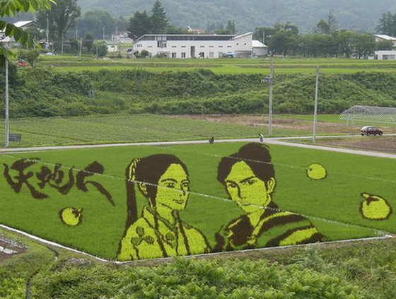 Рисовая живопись