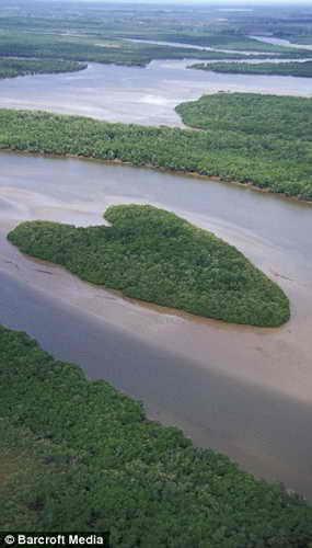 Остров любви: остров в мангровой дельте реки Ваза-Баррис в Бразилии