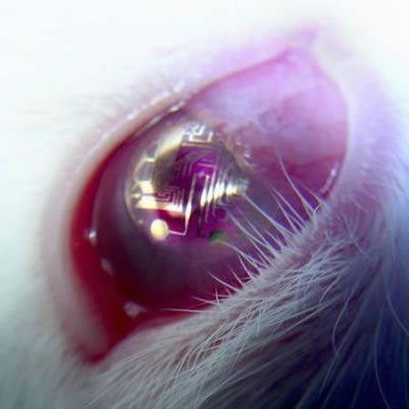 Супер контактные линзы