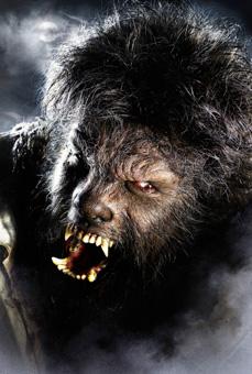 Человек-волк образ в фильме