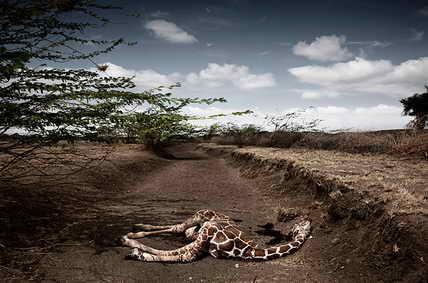 Африка. Кения. Провинция без дождей
