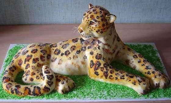 Торт - леопард