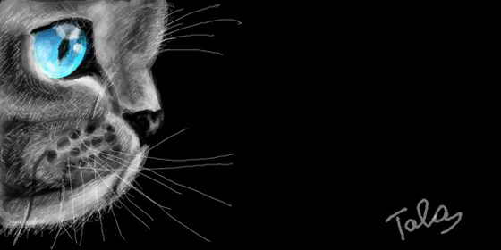 Очаровательная кошка