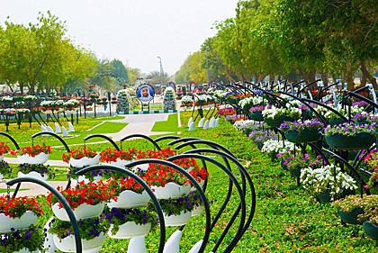 Рекорд Гиннеса - крупнейшая выставка корзин с цветами