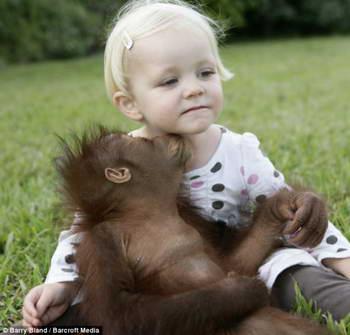 Девочка и обезьяна