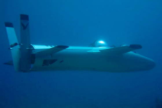 Субморина Deep Flight