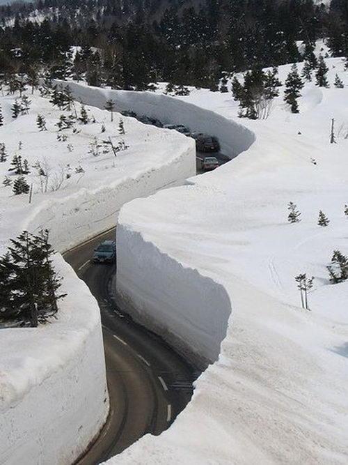 Автомобили в снежном плену
