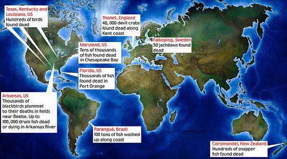 Места гибели животных на карте мира