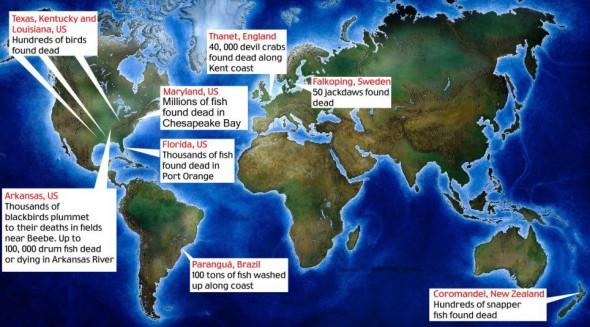 Карта смерти животных по миру