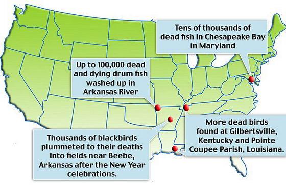 Карта гибели животных