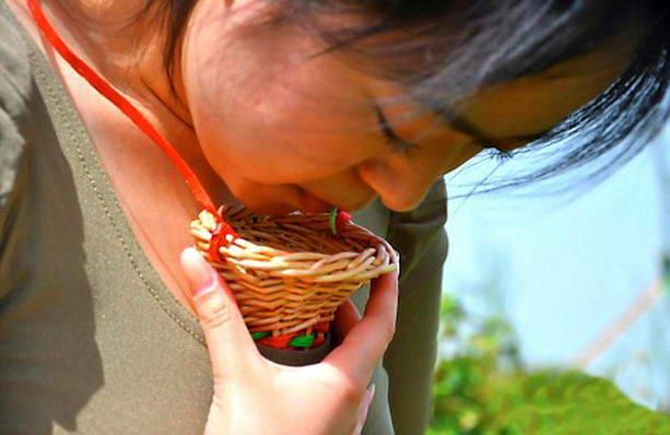 девственница на сборе чая в Китае