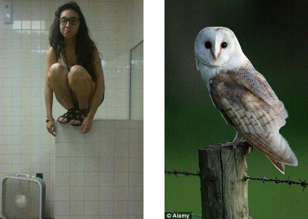 Поза совы – новое популярное увлечение в Интернете