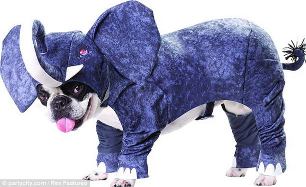 костюм слона для собаки