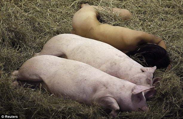 голая Миру Ким со свиньями
