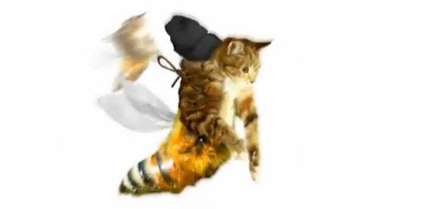 Мягкие кошки для альпинизма