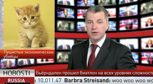 Кошки и «мимими» угрожают экономики России