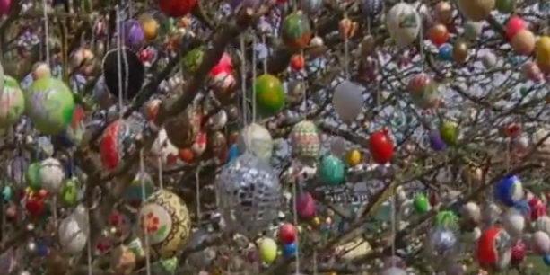 Дерево с пасхальными яйцами