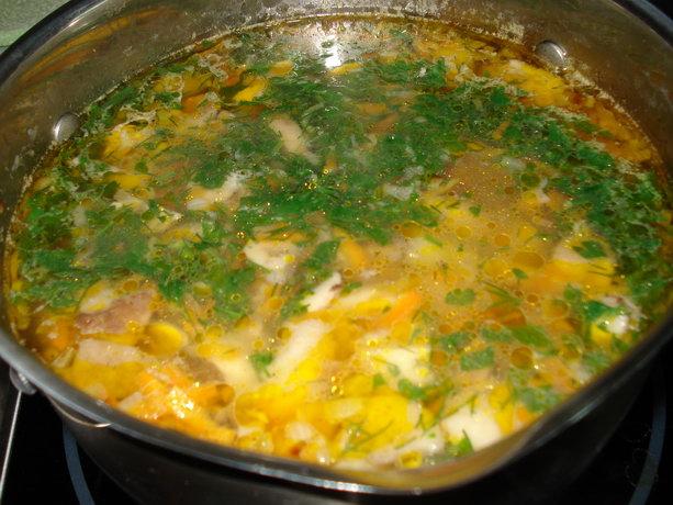 Грибные супы – простые рецепты из свежих лесных грибов
