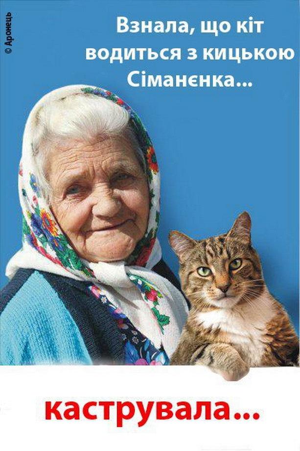 кот против януковича