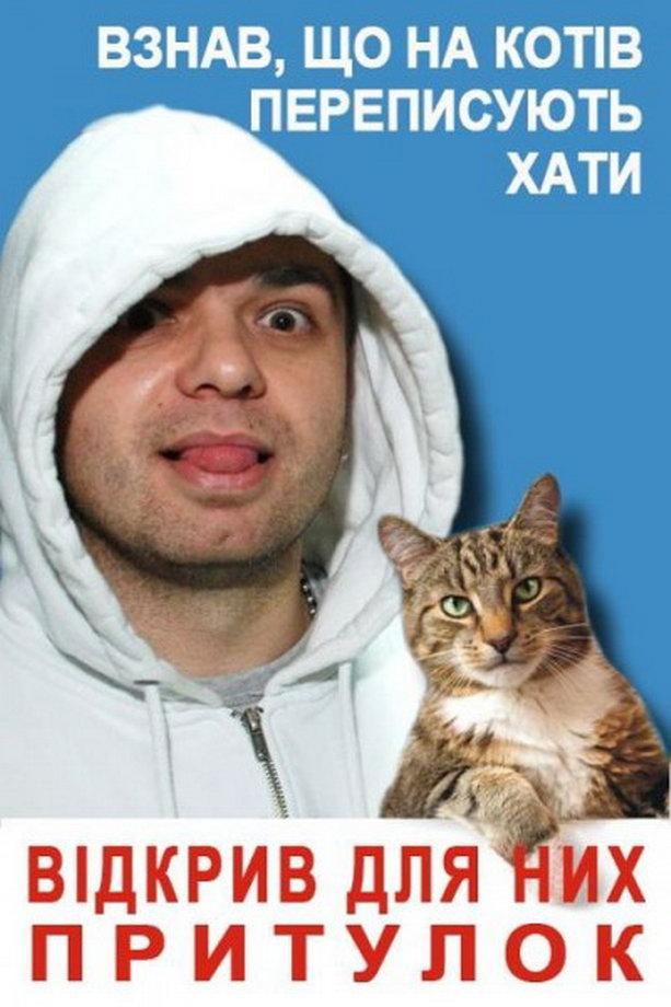 фотожаба с котом